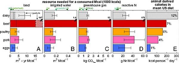 Ressources necessaires pour la production de 1000 kcal consomés